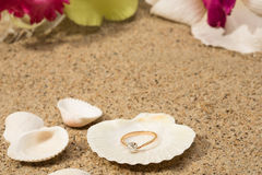 Wedding ring in a shell Stock Photography