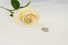 Wedding ring and White rose on white veil Royalty Free Stock Image