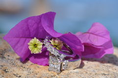 Wedding rings. And flower with ocean in the back ground stock photography