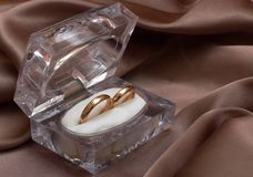 Wedding rings. In a box Royalty Free Stock Image