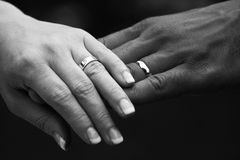 Wedding rings. A close up picture of the happy couple's wedding rings royalty free stock photography