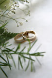 Wedding rings. Picture of pair wedding rings royalty free stock images