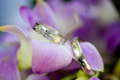 Wedding Rings. A bride and groom's wedding rings on an orchid Royalty Free Stock Image