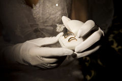 Wedding Rings. Bride is holding a box with wedding rings Stock Photography