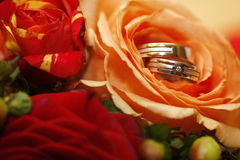 Wedding rings. With diamond inside roses stock photos