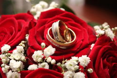 Wedding rings. Close-up two wedding rings on a rose; white flowers in the background Stock Photo