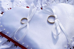 Wedding rings. On a cushion Stock Photography