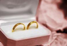 Wedding rings. Marriage rings gift with roses Royalty Free Stock Images