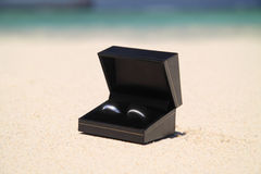Wedding rings. In a black box on the beach sand Royalty Free Stock Photos