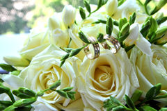 Wedding rings. Two wedding rings on a white rose Royalty Free Stock Photos