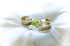 Wedding rings. Two wedding rings photogrpah before the wedding Stock Image
