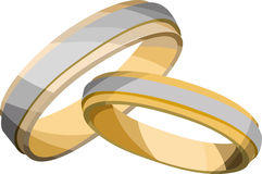 Wedding Rings. Two golden wedding rings one large one small on a white background Royalty Free Stock Photography