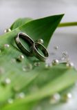 Wedding rings. Weddings rings on a tulip leaf Royalty Free Stock Images