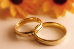 Wedding Rings. Pair of wedding rings. Picture in a dreamy, soft style, only the center is in focus. I will be very happy if you let me know when you use this Royalty Free Stock Image