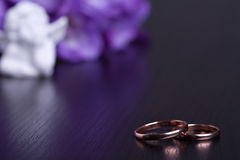 Free Wedding Rings Stock Photos - 24769713