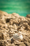 Wedding rings. Lying on the rocks against the sea Stock Image