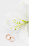 Wedding rings. & white flower lily Stock Photography