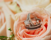 Wedding rings. Pair of wedding rings on flower bouquet flower of roses, focus on diamond Stock Images