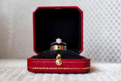 Wedding rings. In the box Stock Photography