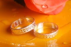 Wedding rings. Macro shot of wedding rings with rose Royalty Free Stock Photos