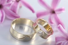 Wedding rings stock photography