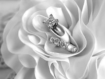 Wedding Rings. Diamond wedding rings in the folds of the bride's dress Royalty Free Stock Photos