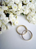 Wedding Rings. And white flowers Stock Image