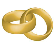 Wedding rings. Vector illustration of devoured wedding rings Stock Photography