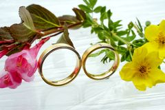 Free Wedding Rings Stock Images - 5353634
