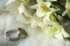Wedding rings. Picture of a wedding rings and the flowers stock photo