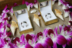 Wedding rings. Silver wedding bands displayed with sand and shells - beach theme Royalty Free Stock Images