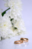 Wedding rings. And white chrysanthemumon on a grey background. Shallow DOF Royalty Free Stock Photo