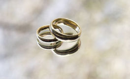 Wedding rings. On a mirror with trees reflected in the background Stock Photography