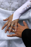 Wedding rings. Hands with golden wedding rings stock photo