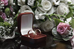 Wedding rings. Roses and gold rings. wedding Stock Photos