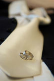Wedding rings. And grooms tie Stock Images