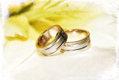 Wedding rings. Man and woman wedding rings placed on top of each other near a pastel colored flower with old picture effect Royalty Free Stock Images
