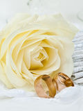 Wedding rings. Wedding gold rings and white rose Royalty Free Stock Photo