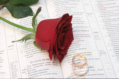 Wedding rings. Rose with wedding rings and bible on black Royalty Free Stock Images