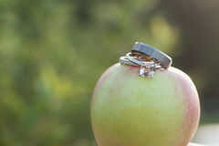 Wedding Rings on an Apple. A set of wedding rings placed on an apple in an orchard Stock Photos