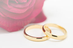 Wedding rings and artificial rose on white background Royalty Free Stock Image