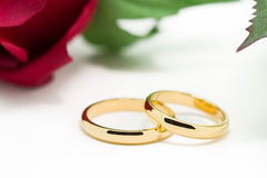 Wedding rings and artificial rose on white background Stock Image