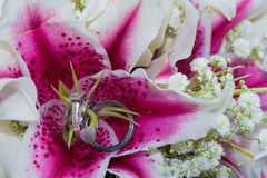 Wedding rings on asiatic lily. Wedding rings on stamen area of bright pink fuschia lily flowers Royalty Free Stock Image