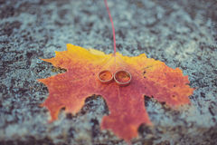 Wedding rings on autunm yellow and pink leaf. Wedding rings on autunm leaf with rock background Royalty Free Stock Photography