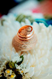 Wedding rings on a background of a bouquet Stock Photos