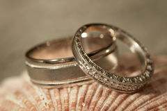 Wedding rings at beach Royalty Free Stock Photography
