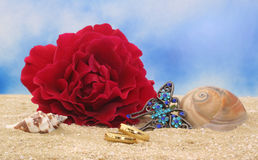 Wedding Rings on Beach. Wedding Rings on Sand With Rose and Sea Shells Royalty Free Stock Photos