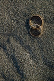 Wedding rings on the beach. Closeup view Stock Images
