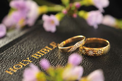 Wedding rings, Bible. A pair of wedding rings, placed on a holy bible, surrounded by May flowers Royalty Free Stock Photography