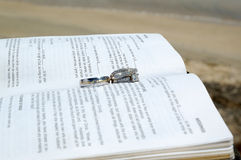 wedding Rings on a bible Stock Images